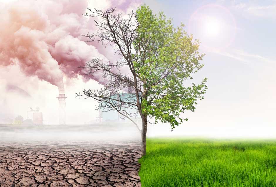 Barrido y baldeo eléctrico/gas. Una solución ecológica para la limpieza vial